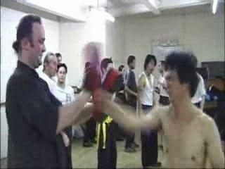 Wing Chun Kung Fu: the Master