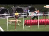 STGR Lezignan Arko Jumping2