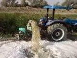 çobanlarda sulama sistemi...newholland td55 4