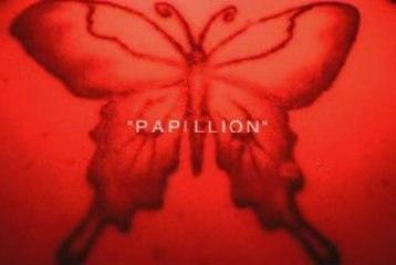 Paul & Price - Papillon