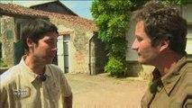 Histoires de Vendée : Les Vignes de Vendée