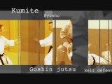 Karate Shotokan - Kata Heian - Tekki - Bassai dai - Kumite