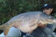 carpe miroir 21 kg +..... combat fish spot