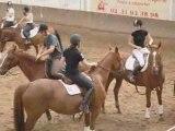 Horse ball Portes ouvertes